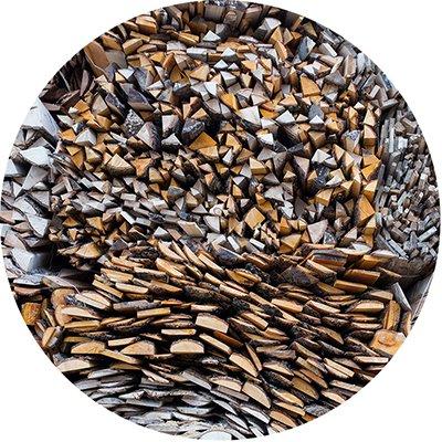 Wood for BIO fuel